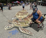 ctwcc-3d-chalk-art-turtle-pose-wheelchair